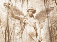 Angels, Totems and Guides