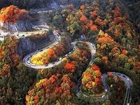 Volunteer  State (Tennessee)