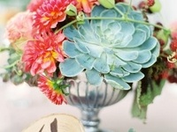 Centerpieces and table flowers
