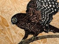 Art - Woodcut, wood block, linocut
