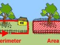 Teaching Math - Area, Perimeter, Volume