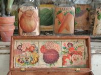 Seed boxes, bags, jars all things seed