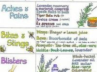 Aromatherapy, Essential Oils, Herbs & Natural Remedies