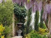 Patios & Gardenscapes