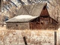 Neat Structures - Barns