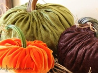 Fall Crafting and Decor