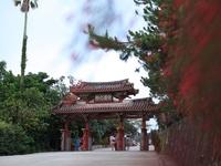 沖縄。。。。where im from