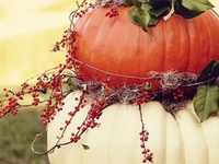 Thanksgiving - Fall Crafts/Decor