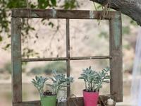 Outdoor Deco Ideas