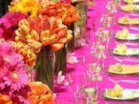 table top - table cloth ideas