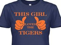 Baseball and My Tigers