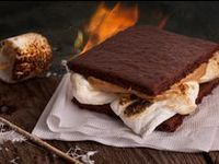 Fun recipes to try at the campsite, with wild game or wild edibles, or to get the family excited about nature.
