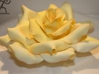 Fondant Flowers Tutorials