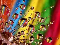 More Than A Rainbow