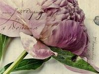 Victorian printables & scrap, Vintage ads, beautiful paper and fabrics, Victorian paintings and cards.