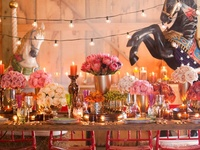 Party Ideas : Decor , Food,  and Drinks and More