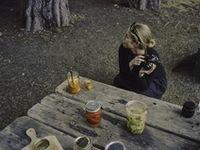 Picnic   Camping   Outdoor