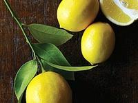 Lemon, Limes - Yummy Citrus!