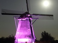 *Lighthouses & Windmills*