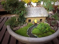 Miniature or Fairy Gardening
