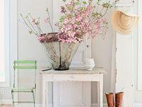 Home Design&Decor