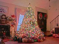 O Christmas Tree...