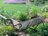 Gardening Things.