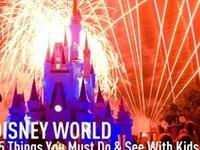 Disney Magic Kingdom, Animal Kingdom, Hollywood Studio and Epcot tips.