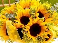 Cheery and bright, sunflowers are wonderful theme for a summer or fall wedding! Inspirations from The Bride's Shoppe, Great Falls, MT  www.TheBridesShoppe.com