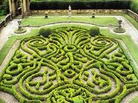 The Art of clipping Shrubs, Flowers & Other into Ornamental Shapes.