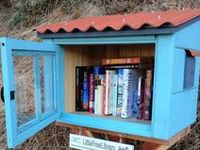 i love this idea.. and so i opened my own free library in the Netherlands, i want a free library in every front yard.. come on people  Read books for free!