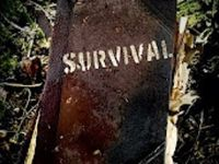 Survival stuff, techniques, tips & smart thinking. For when SHTF. I realize wifi & Internet will be non existent... That's why I'm making a book for my own reference.
