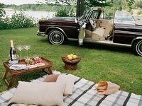 Déjeuner sur l herbe