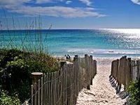 Beachin' It