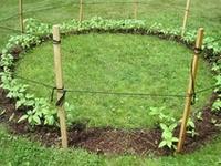 gardening and stuff