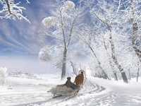 I Love PICTURES of Snow