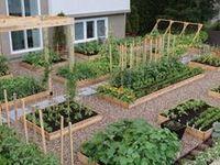 Gardening & Outdoor Space