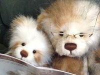 Collectable bears and other handmade friends