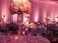 My Wedding 12/13/14