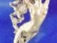 MermaidDirect.com