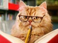 Literary Animal Friends