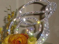 """Single monogram cake topper is encrusted with Swarovski flat back crystals on one side. The material is brushed metal and is 1/8"""" thick. The cake topper can be ordered with or without spikes. There are 2 spikes at the end of the cake topper. At the end of your event, use your cake topper as a Christmas tree star or display it in a shadow box. You can always reuse the topper for birthdays, anniversaries and many other milestone events in your life!"""