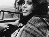 Beautiful *Mesmerizing*, Sophia Loren
