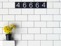 Anything and everything LEGO