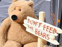 """Please don't feed the bears, they're stuffed."""