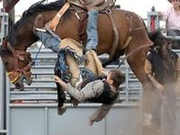 Rodeo life:-)