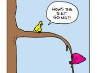 Diet Woes