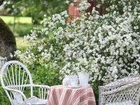 Gorgeous gardens and ideas