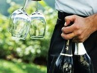 I love wine, and the beauty of its serving. Elegance personified whether sharing it at a picnic or a formal dinner.
