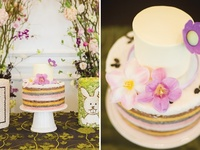 A selection of my fovourite Wedding Cakes, Birthday Cakes, Celebtation Cakes, Baby Cakes, Children's Cakes...